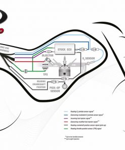 Rapid Bike EVO Diagramm
